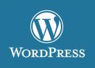 Profesionalna izrada web sajtova u WordPress-u