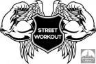 Streetworkout treninzi - treninzi na otvorenom