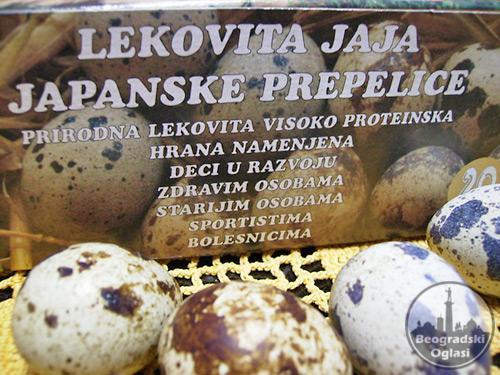 Jaja japanskih prepelica