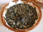 Golica-Bundevino seme