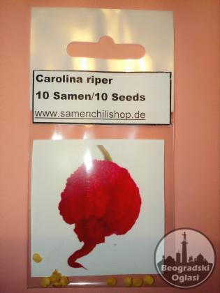 Seme najljuce chilli paprike na svetu Caroline Riper