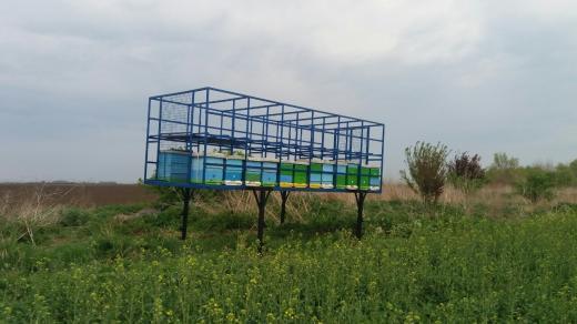Platforma za košnice