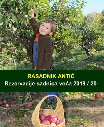 Sadnice voća Rezervacija za jesen 2019