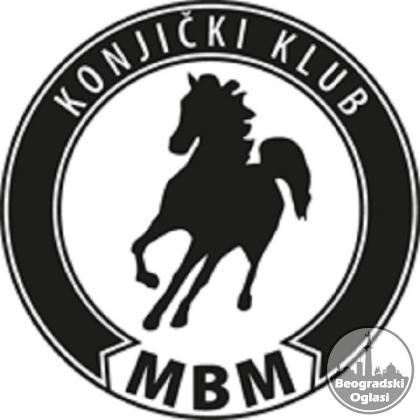 Konji za film
