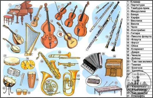 OTKUPLJUJEM HARMONIKE za muzičku  školu, Weltmaister, Honer, Delicia, Royal standard i sve druge profesionalne harmonike i druge muzičke instrumente: