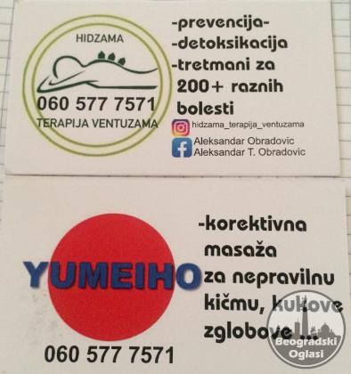 Terapija Hidzama i Yumeiho