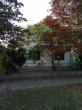Prodajem kucu povrsine 120m2 na placu od 28 ari CENA: 11.000EUR
