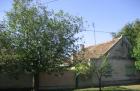 Prodajem porodicnu kucu povoljno CENA: 7.000EUR