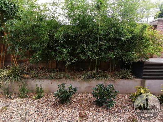 Uređenje dvorišta, bašta, vrtova